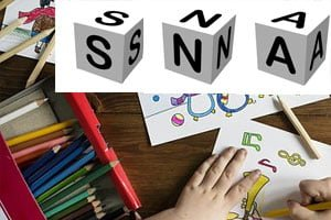 sna - special needs assistant courses Ireland
