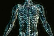 myoskeletal seminar