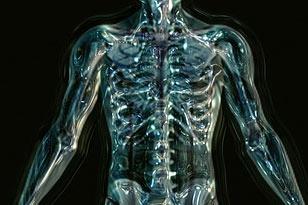 Myoskeletal Seminar July 16-18 2021