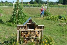 permaculture course in Cork, Ireland
