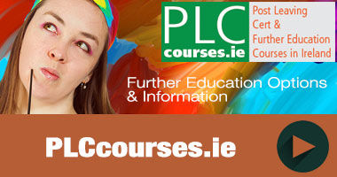plc courses website
