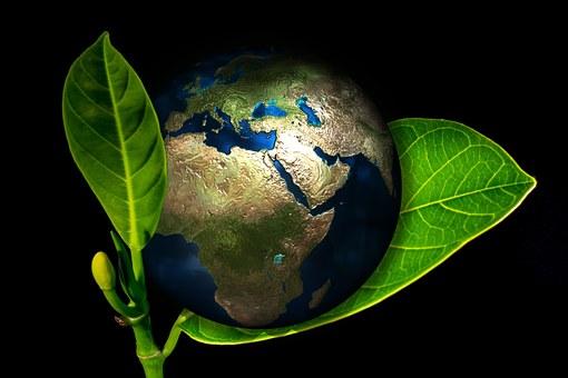 Environmental Studies QQI level 5