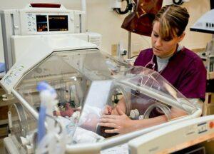 Nursing Studies and Pre Nursing PLC Courses