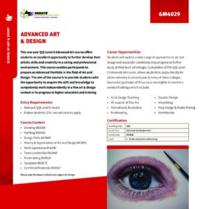Art & Design PLC Course – Level 6