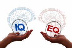 Emotional Intelligence – Online Course