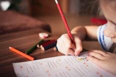 Primary School Teaching Courses